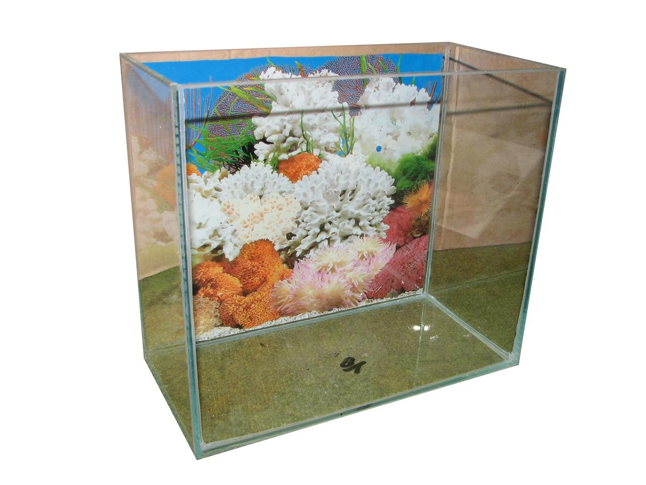 10л. аквариум